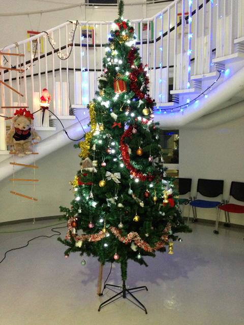 広島大学クリスマスツリー