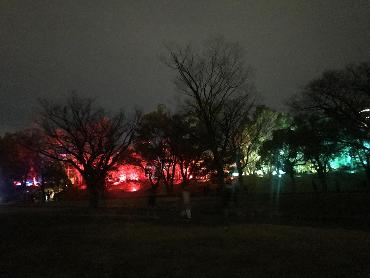 広島城光の祭外観